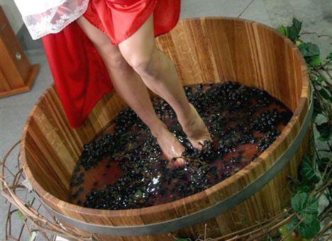 Виноделие в РФ